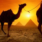 All Inclusive Family Holidays in Egypt