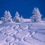 La Plagne skiig with Ski Famille